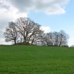 Zwei Hügelgräber, das dritte fehlt