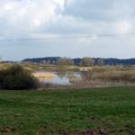 Naturschutzgebiet Entenmoor