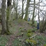 Hügelgräber an der Flurgrenze Bild 1