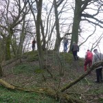 Hügelgräber an der Flurgrenze Bild 2