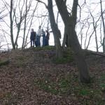 Hügelgräber an der Flurgrenze Bild 3