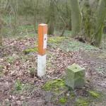 Hügelgräber an der Flurgrenze Bild 4