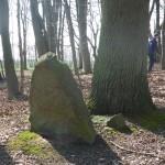 Friedhof Steinhagen Bild 1