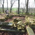 Friedhof Steinhagen Bild 2