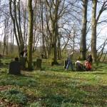 Friedhof Steinhagen Bild 3
