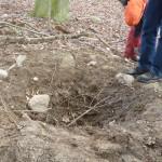 Grabungsschäden an Hügelgräbern Bild 1
